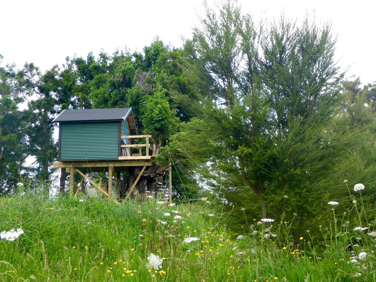 Photo of property: Side view of Treehouse